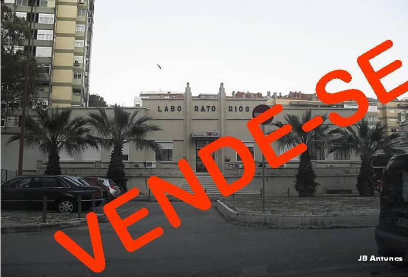 No Lumiar, Estúdios da Tobis à venda, um ícone do Cinema Português (1/3)